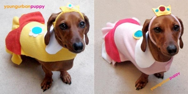 Mario Dog Costume Related Keywords & Suggestions