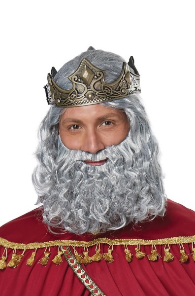 Pure Costumes  California Costumes Biblical King Adult Wig And