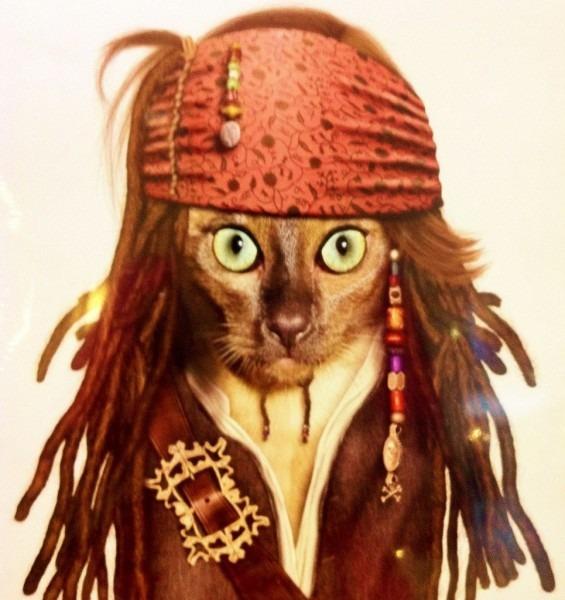 Halloween Cat Costume Archives