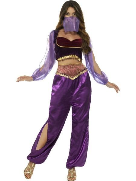 Ladies Arabian Princess Womens Costume