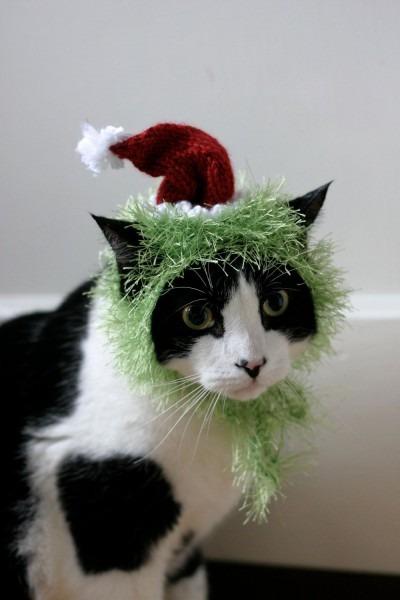 The Grinch Cat Hat Christmas Dr Seuss Pet Costume