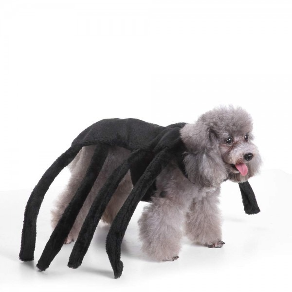 Amazon Com   Coppthinktu Spider Dog Costume Halloween Tarantula