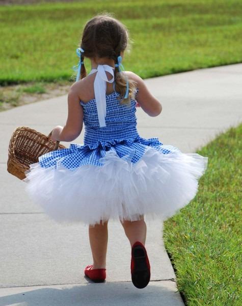 Custom Dorothy Wizard Of Oz Inspired Tutu Dress Costume Size 18