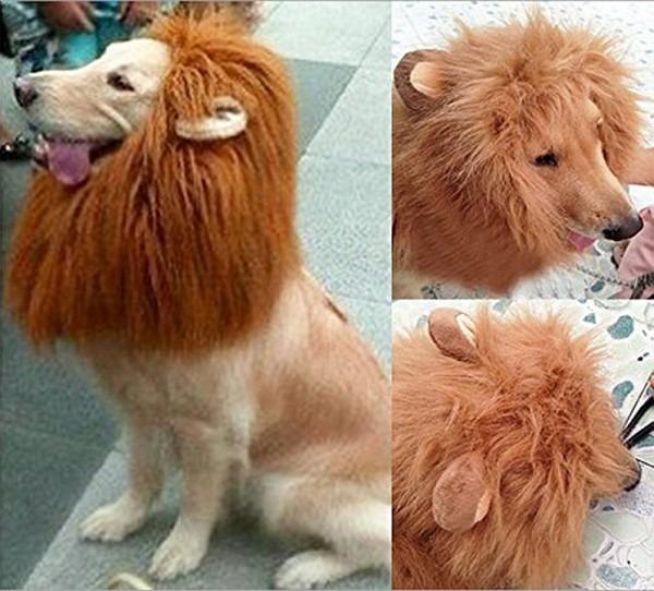 Amazon Com   Looching 1pcs Brown Lion Mane Costume Big Dog Lion