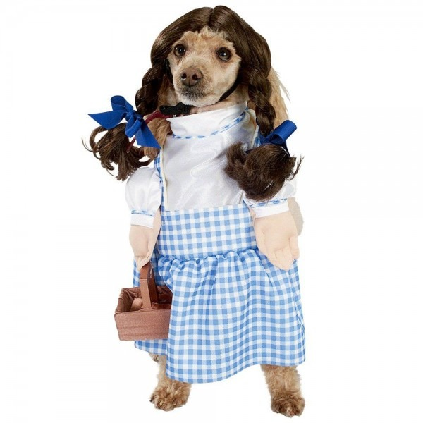 Halloween Wizard Of Oz Dorothy Dog Costume