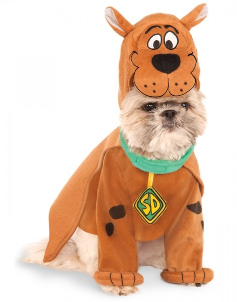 Scooby Doo Scoobert Pet Dog Cat Halloween Costume