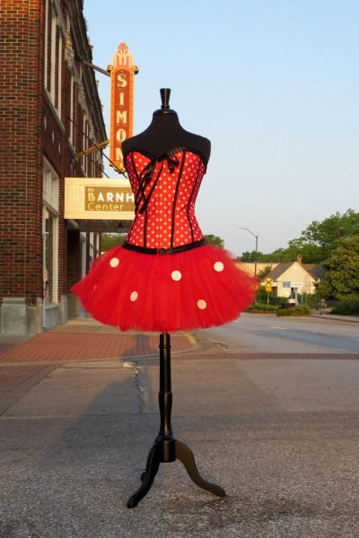 Adult Minnie Mouse Halloween Costume Skirt  Halloween, Costume