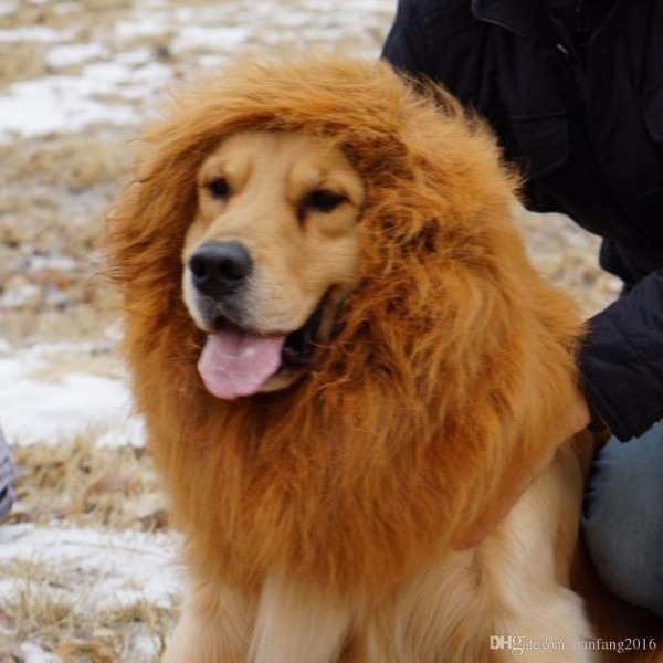 2019 Hot Funny Fancy Pet Dogs Lion Costume Funny Dress Up Stuffed