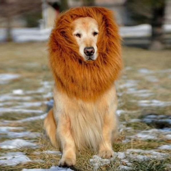 Cute Dress Up Pet Costume Cat Halloween Clothes Dogs Lion Mane Wig