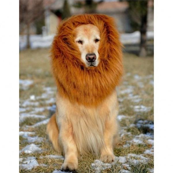 Pet Costume Dog Lion Wigs Mane Hair Festival Party Fancy Dress