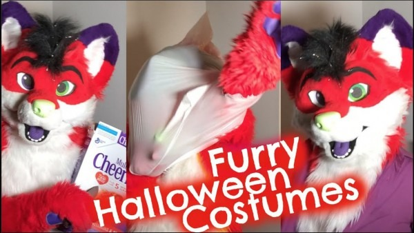 Last Minute Furry Halloween Costume Ideas