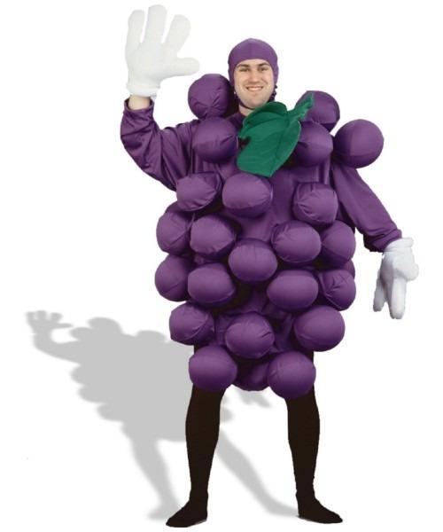 Adult Purple Grapes Fruit Costume