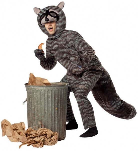Raccoon Adult Costumes