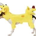 Cat Dog Costume