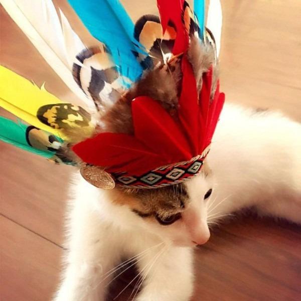 2018 Hot Sale Pet Indians Style Feather Headdress Hat Dog