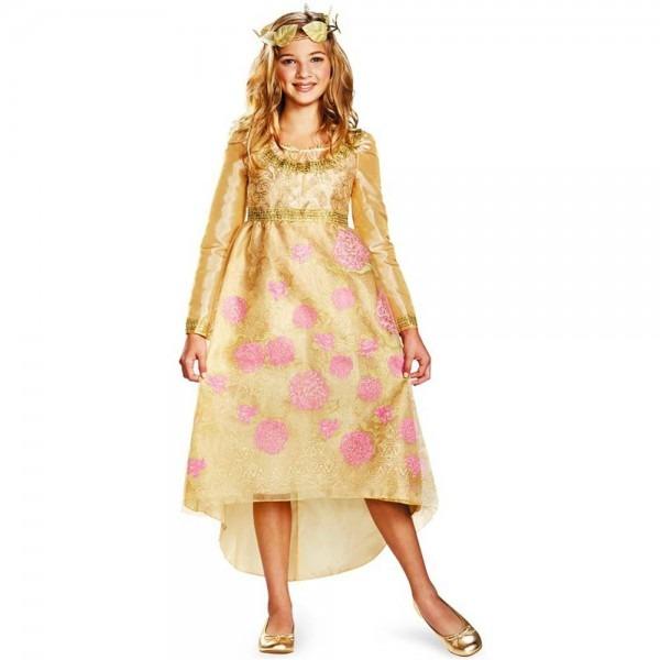 Amazon Com  Aurora Coronation Gown Costume