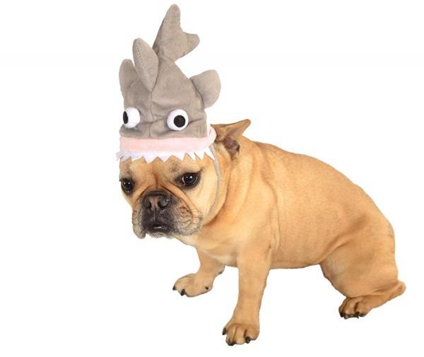 Amazon Com  Rubie's Costume Shark Pet Costume Hat  Pet Supplies