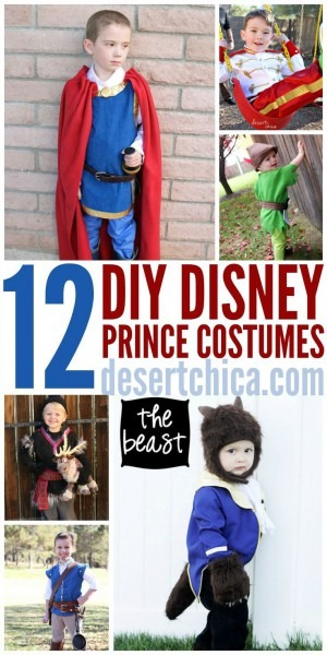 Make Your Little (or Big Guy) A Homemade Prince Costume!