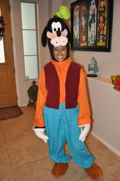 Goofy Costumes (for Men, Women, Kids)