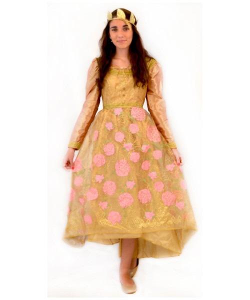 Maleficient Aurora Coronation Gown Womens Costume