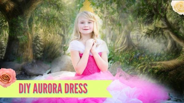 Diy Sleeping Beauty Aurora Dress Costume Tutu