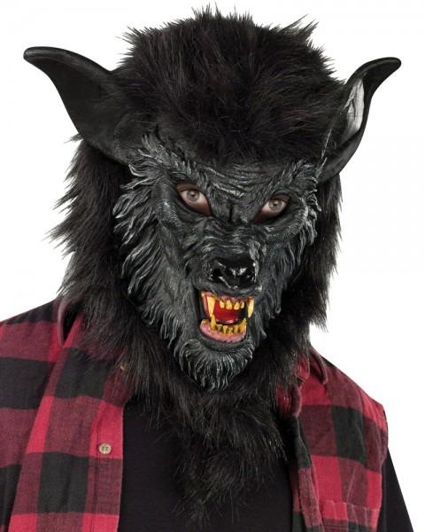 Boys Hungry Howler Werewolf Costume  Child White Werewolf Costume