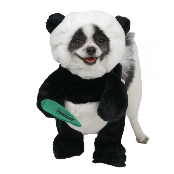 Amazon Com   Pandaloon Panda Puppy Dog Pet Costume (size 1 (13