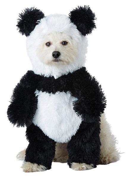 Amazon Com  California Costume Panda Pooch Dog Costume  Pet Supplies
