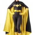 Batgirl Costume Mask