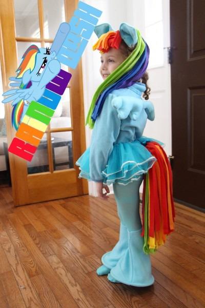 Grosgrain  Diy Rainbow Dash Costume